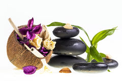 Spa stones and coconut stock photos