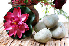 Spa stones and flower Stock Image