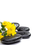 Spa stones and flower isolated on white Royalty Free Stock Images