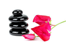 Spa stones with flower on white background Stock Photos