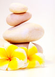 Spa stones & flowers Royalty Free Stock Image