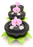 Spa stones with flowers Stock Photography