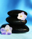Spa stones with flowers on blue silk background Royalty Free Stock Photo