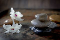 Spa stones and flowers on the dark background. Spa stones and flowers on the dark background royalty free stock photography
