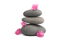 Spa stones and flowers isolated Stock Photo