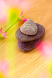 Spa stones and flowers, wellness/beauty care Royalty Free Stock Photo
