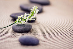 Spa stones and flowers, wellness/beauty care Royalty Free Stock Image