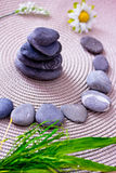 Spa stones and flowers, wellness/beauty care Stock Image