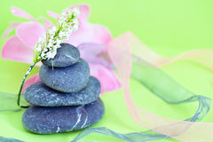 Spa stones & flowers, wellness/beauty care Stock Images