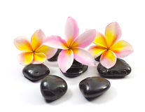 Spa stones and Frangipani flower. S royalty free stock images