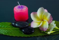 Spa stones and frangipani flower. Royalty Free Stock Photo