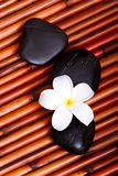Spa stones and frangipani flower on bamboo Royalty Free Stock Photo