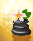 Spa stones with frangipani flower Royalty Free Stock Photos