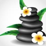 Spa Stones With Frangipani Flower. Stock Image