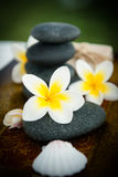 Spa stones with frangipani Royalty Free Stock Image