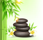 Spa stones and green bamboo Royalty Free Stock Photography