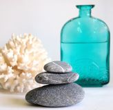 Spa stones. A green bottle, and a coral Royalty Free Stock Images