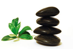 Spa stones with green leaf Stock Image