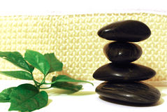 Spa stones with green leaf Stock Photos