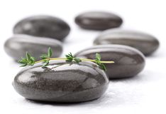 Spa stones with green leaves Royalty Free Stock Images