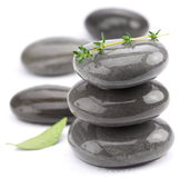 Spa stones with green leaves Royalty Free Stock Image