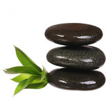 Spa Stones and Green Leaves isolated. Zen pebbles. Spa Stones and Green Leaves isolated on white. Zen pebbles stock image
