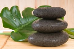 Spa stones with green plant with bamboo Royalty Free Stock Images