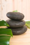 Spa stones with green plant over bamboo Stock Images