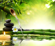 Free Spa Stones In Garden With Flow Water Stock Photography - 43950072