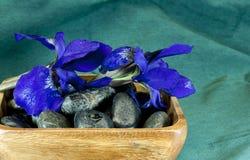 Spa stones and iris Stock Photos