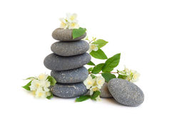 Spa stones and jasmine Stock Photos