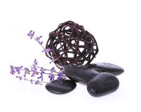 Spa stones, lavender flower and tangle of willow Stock Photography