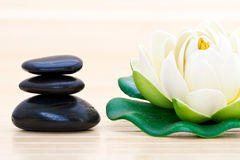 Spa stones and lotus blossom Stock Photos