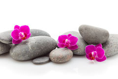 Spa stones. Spa masage stones and orchid isolated on the white background Stock Photo