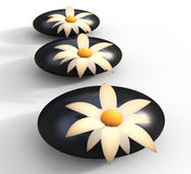 Spa Stones Means Flowers Blooming And Serenity Royalty Free Stock Photography