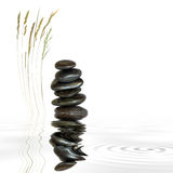 Spa Stones and Natural Grass. Zen abstract of black spa stones in perfect balance with natural grass and reflection in rippled grey water, over white background Royalty Free Stock Images