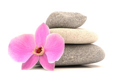 Spa stones with orchid Stock Photo