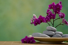 Spa Stones with orchid Stock Photography