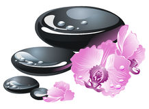 Spa stones with orchid flower Stock Image