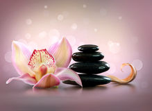 Spa Stones and Orchid Flower. Stone Massage Royalty Free Stock Image