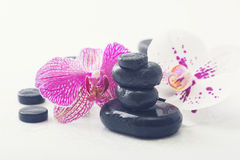 Spa Stones and Orchid Stock Photo