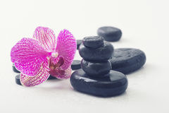 Spa Stones and Orchid Royalty Free Stock Images