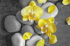 Spa stones with orchid flowers. Top view royalty free stock photography