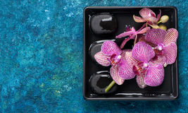 Spa stones and orchid flowers Royalty Free Stock Images