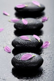 Spa stones and petals Royalty Free Stock Photo