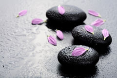 Spa stones and petals Stock Images