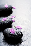 Spa stones and petals Royalty Free Stock Images