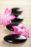 Spa stones and pink flower Royalty Free Stock Photo