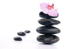 Spa stones with pink flower Royalty Free Stock Photos
