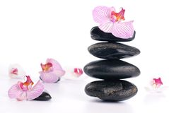 Spa stones with pink flower Stock Photo